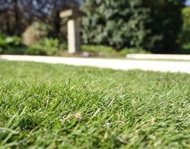 Artifical Lawns in York